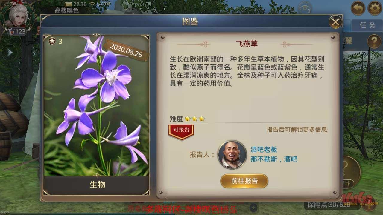 3、飞燕草6.jpg